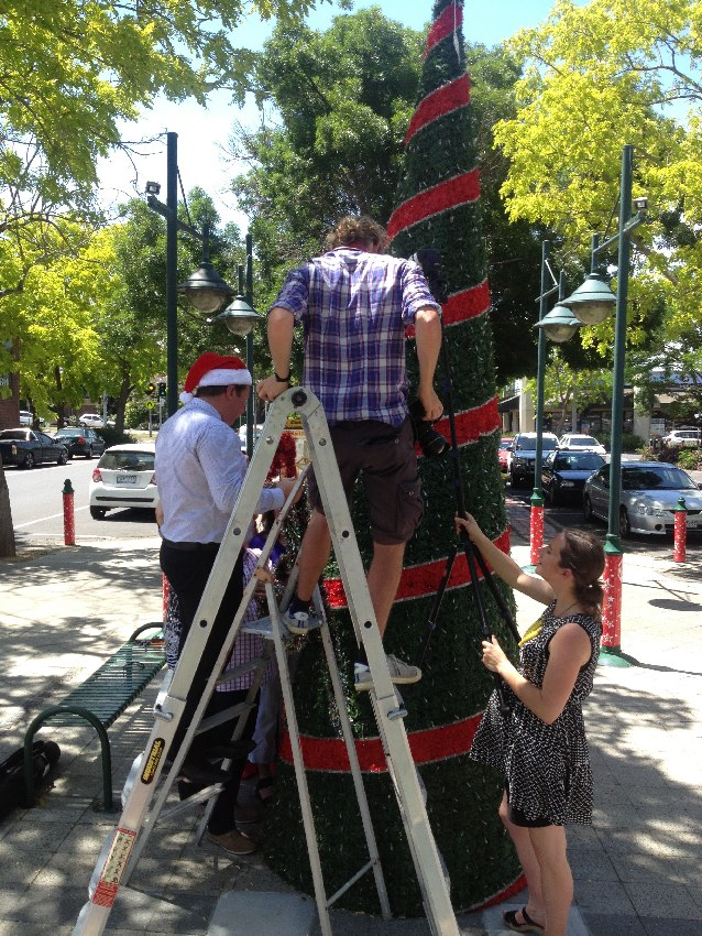 Putting the final touches on the Highton Christmas tree in Bellevue Avenue